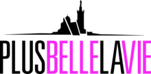 Description de l'image Plus belle la vie 2014 logo.png.