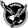 Football Namibie federation.png