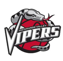 Logo du Vipers de Rio Grande Valley