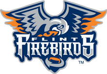 Description de l'image Flint Firebirds.png.