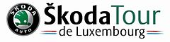 Description de l'image SkodaLuxembourg.jpg.