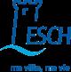 Drapeau de Esch-sur-Alzette