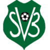Football Suriname federation.png