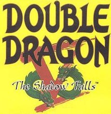 Image illustrative de l'article Double Dragon V: The Shadow Falls