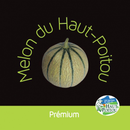 image illustrative de l'article Melon du Haut-Poitou