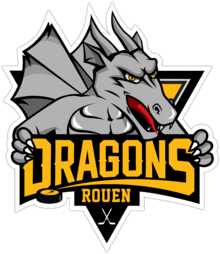 Description de l'image  Logo Dragons de Rouen 2013-1.png.
