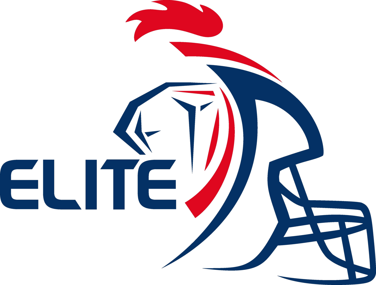 Championnat de france de football am ricain wikip dia - Logo championnat foot ...