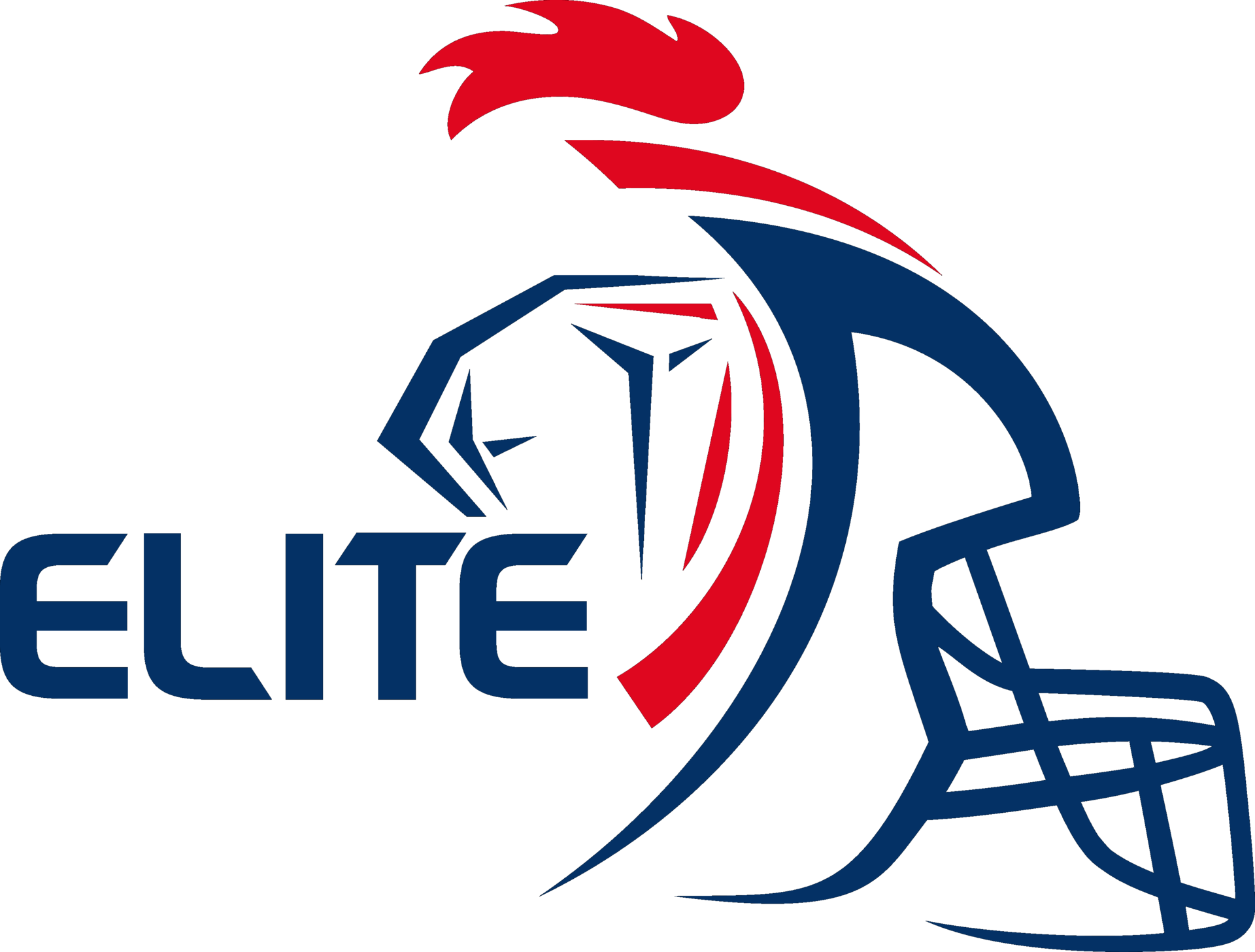 Championnat de france de football am ricain 2015 wikip dia - Logo championnat foot ...