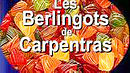 Image illustrative de l'article Berlingot de Carpentras