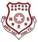 Logo du North East Stars
