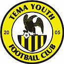 Logo du Tema Youth