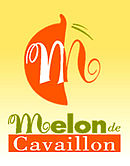 Image illustrative de l'article Melon de Cavaillon