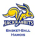 Basket-ball hamois.jpg