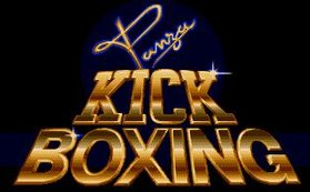 Image illustrative de l'article Panza Kick Boxing