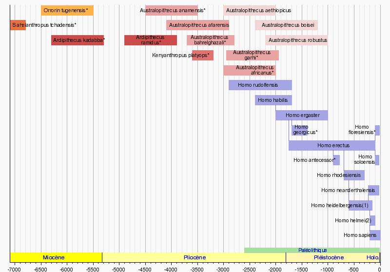 http://upload.wikimedia.org/wikipedia/fr/timeline/7cbca21f6b945166d52cb2634993220d.png