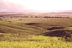 RANCH LANDS AND PRAIRIE NEAR CUSTER BATTLEFIELD, PART OF THE CROW INDIAN RESERVATION - NARA - 549157 (bewurke).jpg