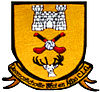 Dromcollogher-BroadfordGAA.jpg