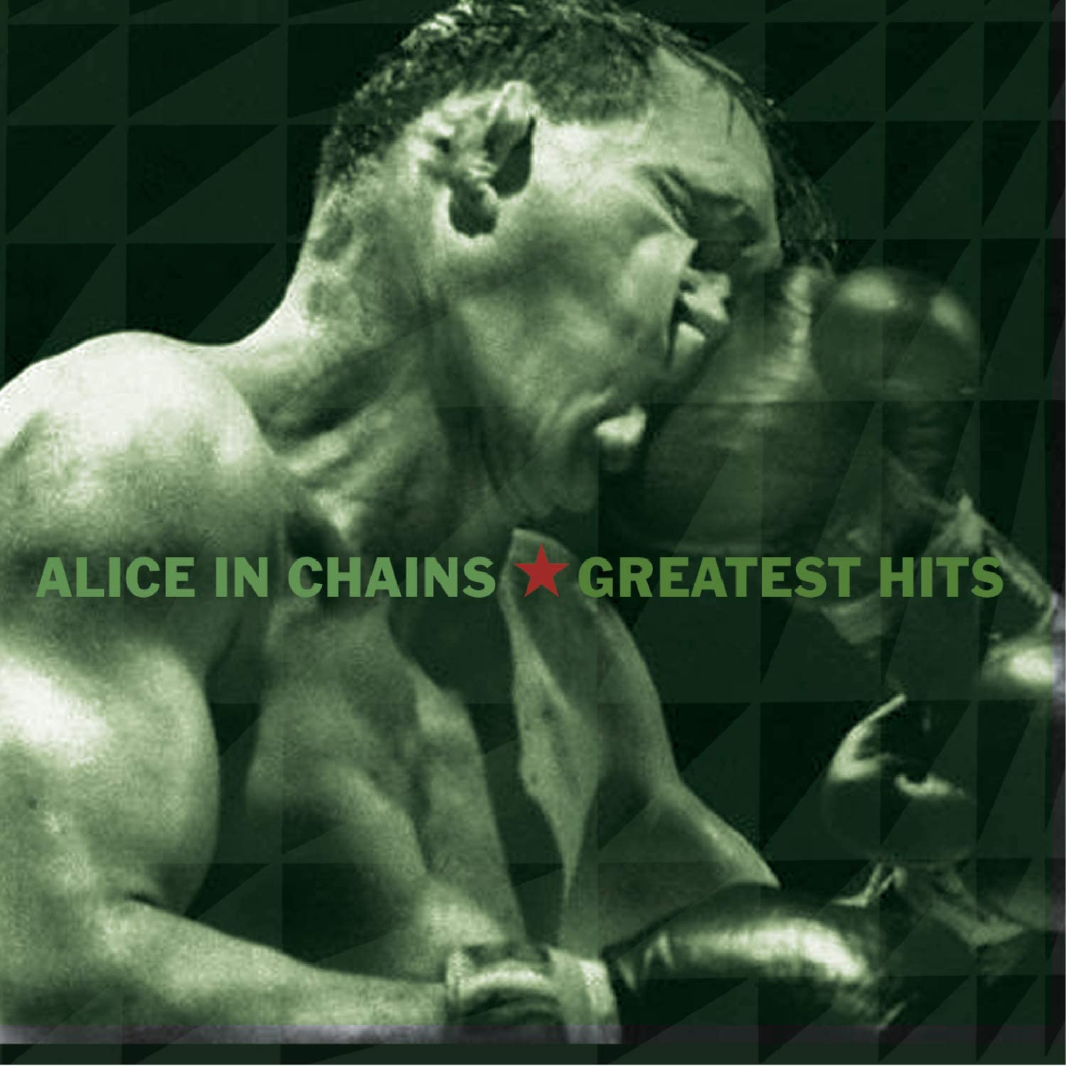Alice in Chains Greatest Hits.jpg