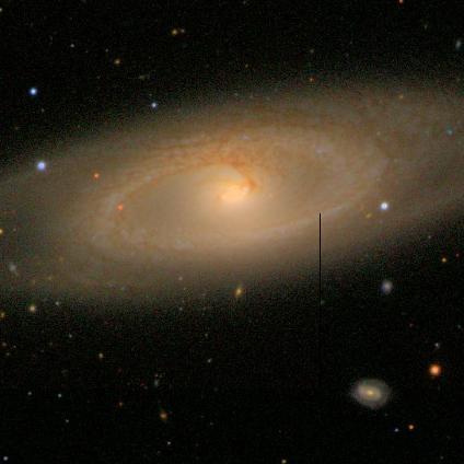 גלקסיית טבעת שסווגה על ידי משתמש באתר