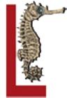 Haifa Uni Publish Logo