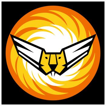 من سفر حرب اكتوبر1973 ........معركة Ofira الجويه IAF_Squadron_107