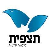 הלוגו של תצפית