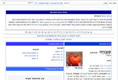 He-wiktionary-main page.png