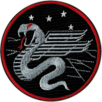 IAF Squadron 160 new logo.png