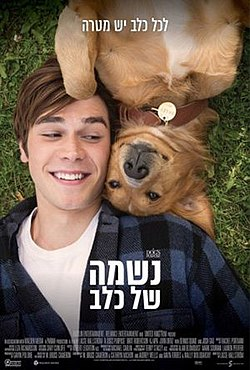 A Dog's Purpose.jpg