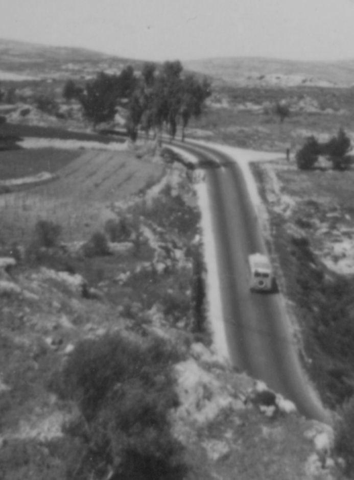 Maale hacastel 1955
