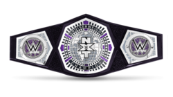 NXT Cruiserweight Championship.png