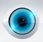 HaAh HaGadol eye logo for civilian series third version.png