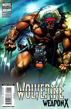 Wolverine Weapon X Vol 1 1b.jpg