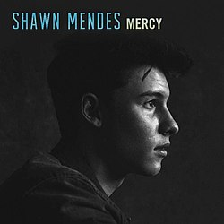 Shawn mendes-mercy s.jpg