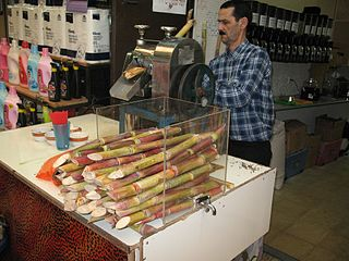 Sugar Cane Juice Sold in Israel