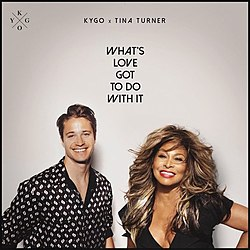 Tina-turner-kygo-whats-love-got-to-do-1594940452-608x608.jpeg