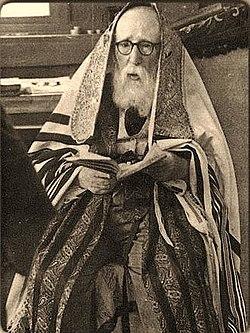 הרב ישראל פרידמן מהוסיאטין.jpg