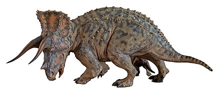 Triceratops-Sideshow-by-Hung-Nguyen-02.jpg