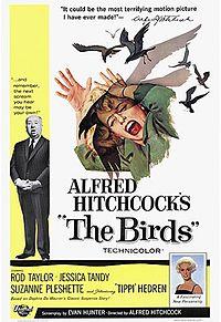 הציפורים  לצפייה ישירה