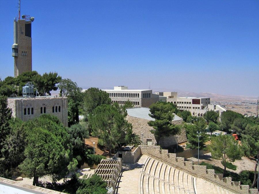 האוניברסיטה