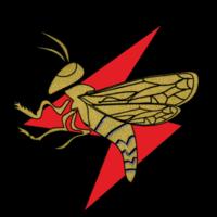 IAF Squadron 113.png