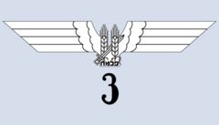 Palmach Galilee Squadron.png
