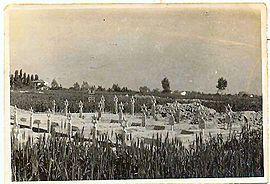 Jews brigade tomb ravenna 1945A.jpg