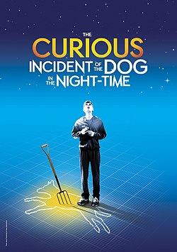 The Curious Incident of the Dog in the Night-Time - play.jpeg