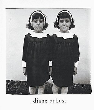 Identical Twins, Roselle, New Jersey, 1967.jpg