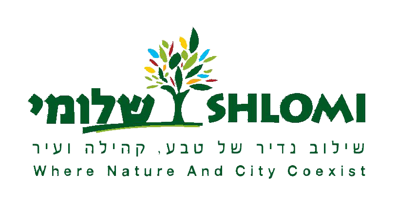 Shlomi logo