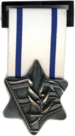 IDF Medal of Appreciation of general command.png