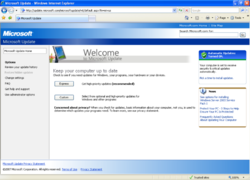 Microsoft Update on Windows XP.png