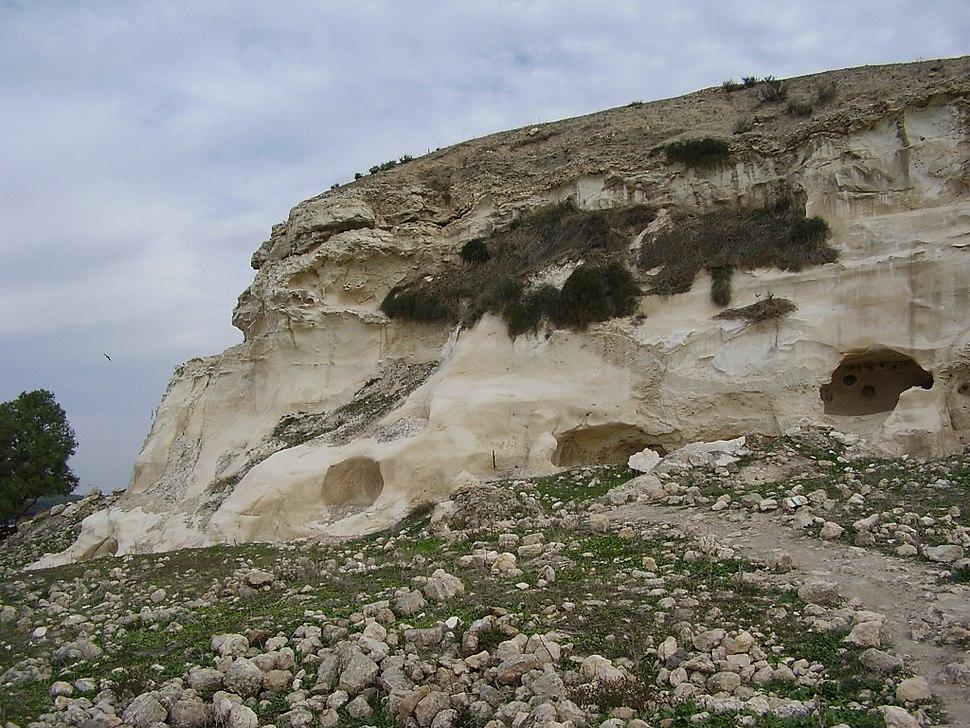 סלע הקירטון הלבן בתל צפית