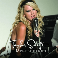Taylor Swift - Picture to Burn.png
